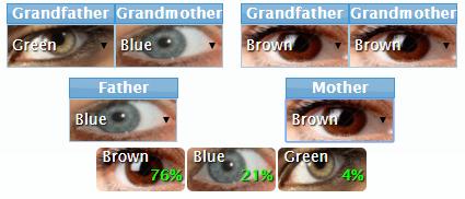 Çocuğunuzun gözü ne renk olacak 1