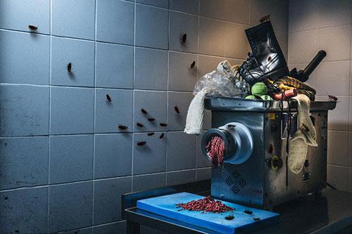 Gıda mühendislerinin itirafları şok etti