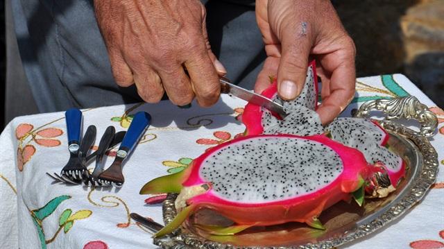 Ejder meyvesi faydaları
