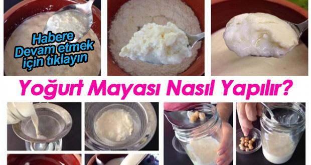 Evinizde hiç katkı maddesi girmemiş doğal yoğurt mayalamak istiyorsunuz, ilk mayayı nereden bulacaksınız, İşte detaylı anlatım