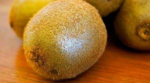 1 adet kivi 1 kilogram portakala denk