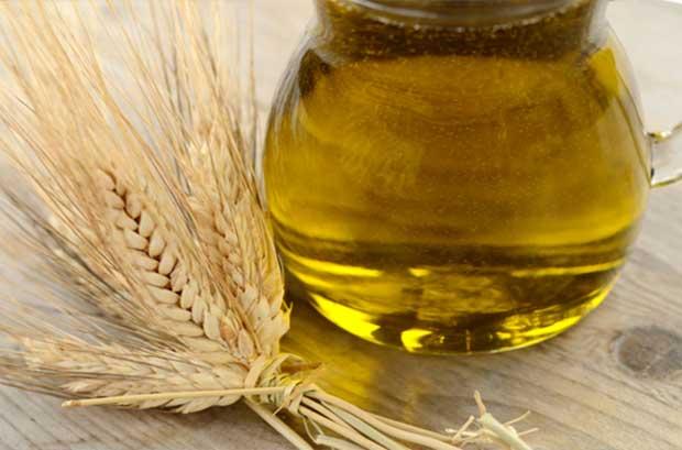 Buğday-Yağının-Faydaları-Nelerdir