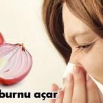 4- Soğan tıkalı burnu açar: Nezle olduğunuzda ya da gribal bir enfeksiyon yaşadığınız zamanlarda soğanı ezerek bir bezin içine koyun ve burnunuza tutarak içinize çekin havayı. Tıkalı burnunuzun açıldığını göreceksiniz.