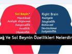 Sağ Ve Sol Beynin Özellikleri Nelerdir?