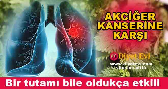 Son yıllarda ülkemizde akciğer kanserine yakalanma oranı gittikçe artıyor. Çevresel ve diğer faktörler bu hastalığın oluşmasını sağlıyor. Uzmanların hastalara tarifini verdiği ısırgan otu ve ebegümeci kürü faydaları ile akciğer kanserine çare oluyor.. Akciğer kanserinin yaygınlaşmasının başlıca sebebi çevresel faktörler olarak biliniyor. Çalışma ortamında ki kötü hava koşulları, arabaların artışı sebebiyle havada ki egzoz dumanları, kirli hava kanseri tetikleyen sebeplerden bazıları. Tabi ki bir de sigara tüketimi herkesin bildiği üzere sebep olan etkenlerden bir tanesi bunun yanında akciğer kanseri bazende genetik olarak kendini göstermektedir. Isırgan otu ve ebegümeci ile hazırlanan kür hastalıklara şifa kaynağı oluyor, faydaları ile kullananları şaşırtıyor… Okumaya devam etmek için görsele tıklayın ve 2. fotoğrafa geçin.