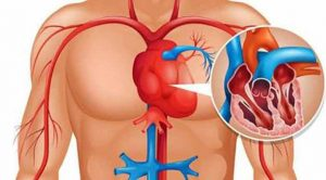 Vücudunuz Kalp Krizi Gerçekleşmeden 1 Ay Önce Sizi Uyarıyor