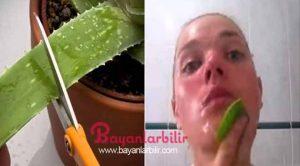 Yüz ve cilt için Aloe vera maskesi