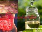 3 Günde vücuttan toksinleri, yağ ve suyu atan kanseri önleyen karışım